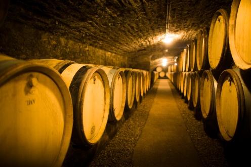 Walking through the cellar